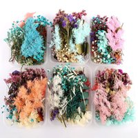 Fashion 1 Box Real Dried Flower Dry Plants For Candle Resin Pendant Necklace Jewelry Making Craft DIY Accessories Decorative Fl Flowers & Wr
