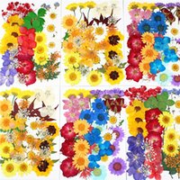 Pack Dried Flowers UV Resin Decorative Natural Flower Stickers 3D Dry Beauty Decal Epoxy Mold DIY Filling Accessories & Wreaths