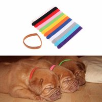 Cat Collars & Leads 12Pcs Colorful Whelping Nylon Pets Dog Puppy Soft Adjustable Identification Mark For Cats Dogs Pet Supplies C42