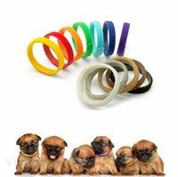 جرو معرف طوق الهوية الكلب الياقات الفرقة ل whelp الجراء هريرة الكلاب الحيوانات الأليفة القط المخملية الياقات العملي 12 ألوان ZC180