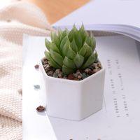Keramik Bonsai Töpfe Großhandel Mini Weiß Porzellan Blumentöpfe Lieferanten für Indoor Home Kindergarten Pflanzgefäße liefert meer versand GWB9102