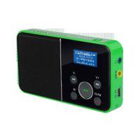 Portable Walkman Digital Speaker FM Radio SD Card Music Player,LCD Display,HiFi Soundcore Motion Audio Amplifier-USB AC Charge