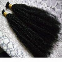2 번들 몽골 킨키 곱슬 머리 200g 아니 웨이프 인간의 머리카락 묶음 땋는 대량 첨부를위한 아프리카 변태 곱슬 인간의 머리카락