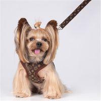 Klassischer Briefmuster Hundebekleidung Hohe Qualität Mode Haustier Kleidung Leashes Frühlingsweste