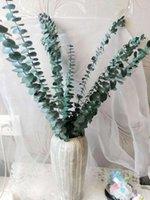 Dekoratif Çiçekler Çelenkler 5 adet Gerçek Kurutulmuş Okaliptüs Şubeleri, Korunmuş Taze Çiçek Buket Doğa Yeşil Bitki Bahçe Ev Yapraklar Biz Biz