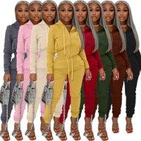 여성용 Tracksuits 벨벳 복장 가을 의류 캐주얼 액티브 착용 후드 롱 슬리브 스웨터 및 사이드 포켓 조깅 스웨트 슈트