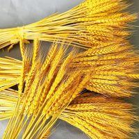 100Pcs lot Natural Dried Flower Wheat Ear Bouquet for Weddomg Living Room Decoration Flloral Arrangement Mall Window Chen Mei Layout