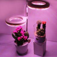 Plante poussez la lumière pleine spectre phytolamp remplissage intérieur succulent simulé Sunulated Sunlight ange angel anneau lampe lumières