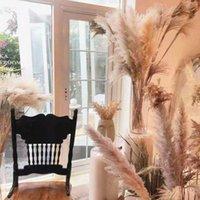 20style Natale decorativo fiore floreale per matrimoni all'ingrosso fiore flower phragmites erba secca naturale pampe piante erba decorazione della casa fiori mazzo 30-80 cm DHL