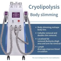 2021 Portable 3 Handle Cryolipolysis Machine Fat Freezed Slimming Combine Double Chin Cryo Loss Weight