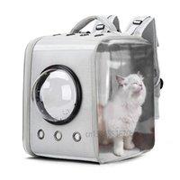 Panorama-transparente Weltraum-Katzen-Tasche Acryl faltbarer Hund Pet Rucksack atmungsaktiv in allen Jahreszeiten-Trägern, Krippenhäuser