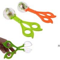 Nouveau Kit de jouet d'exploration Nature mignonne pour enfants Enfants School Plant Insective Biologie Biologie Outil Ensemble Plastique Scissor Clamp Tweezers HWF8383