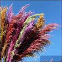 Decorative Wreaths Festive Party Supplies & Gardenmticolor Natural Reed Dried Flower Big Pampas Grass Bouquet Wedding Flowers Ceremony Decor