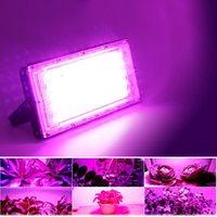 Led Flood Light AC220V Plant Growth Lamp Full Spectrum Grow Greenhouse Hydroponics Floodlight Spotlight Floodlights