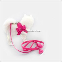 Collars Leashes Supplies Home & Gardenschnauzer Pet Suppliers Aessories No Pl Dog Harness Small Leash Beagle Red Bow Pitbl Pug Puppy Collar