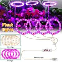 DC5V USB Grow Light Angel Four Ring med dimma Timing Controller LED Växtlampa för Inomhusplantor Blommiga Succulet Blommande Fruktning