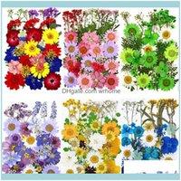 공예 예술, 공예품 선물 홈 정원도 도구 1 팩 말린 꽃 UV 수지 자연 꽃 스티커 DIY 에폭시 필리 용 건조한 뷰티 데칼