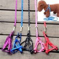 Dog Collars & Leashes Small Pet Cat Puppy Kitten Harness Lead Leash Collar Same Day Post 2