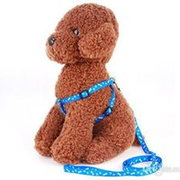 200pcs Teddy Dog Collars & Leashes Size 1. 0*120cm Harness Le...
