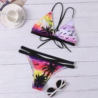 Plaj Mayo Bandaj Bikini 2021 Baskı Hindistan Cevizi Ağacı Mikro Biquini May Sandra Mini Mayo Tanga Kadın Mayo Bsexy