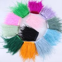 Various Colors of Ostrich Feather Trimming Fringe 5-6 Inches in Width for Crafts Wedding