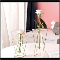 Vases Décor & Garden Drop Delivery 2021 Nordic Ins Geometric Light Luxury Metal Vase, Wrought Iron Creative Home Living Room Floral Flower Gl