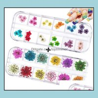 Decorations Salon Health & Beautynail Dried - 3D Dry Flowers Art Stickers Decoration Mini Real Natural Nail Supplies Tips Manicure Decor Dro