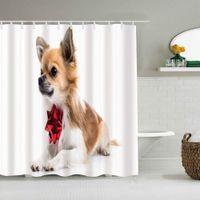 Shower Curtain Cute Chihuahua Animals Wildlife Beautiful Lying Celebration Waterproof Bath Liners Hooks Included -Bathroom