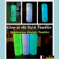 Tumblers Drinkware Kitchen Dining Bar Home Garden Diy Sublimation Glow In The Dark 20Oz Straight Skinny Tumbler With Paint Luminous Ma