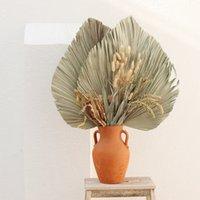 10 teile / los Echt Cattail Lüfter Konservierte trockene natürliche frische Palmblätter für immer Pflanzenmaterial für Haus Hochzeitsdekoration 1418 v2