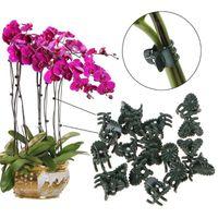 1Set = 50 stücke Kunststoff Fix Clips Pflanze Orchidee Stammrebe Tragen Gemüse Bauernhof Blumen Obst gebunden Bündel Zweig Klemmung Gartenarbeit FWF8516