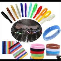 Leashes Supplies Home Gartenkragen Identifikation ID Halsband Band für Welp Welpen Kätzchen Hund Pet Katze Veet Praktische 12 Farben Drop de