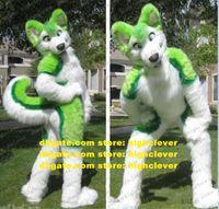 Peluş Kürklü Yeşil Husky Köpek Fox Kurt Fursuit Maskot Kostüm Yetişkin Karikatür Karakter Kıyafet Mega-Etkinlik Reklam Sürüş ZZ7596