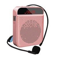 Altavoz portátil de voz de altavoz de altavoz con micrófono personal para enseñar y guiar reproductores MP3 MP3