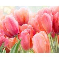 Dipinti Bella Pittura ad olio Fiore Tulipano By Numbers Paint FAI DA TE Moderna Tela Immagine dipinta a mano Decorazione per la casa regalo