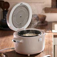 Cuisinières à riz 3L Cuisinière électrique Portable Vapeur à vapeur NO-Stick Pot Conserver au chaud approprié pour 1-4People Cuisson Stews Fluileau