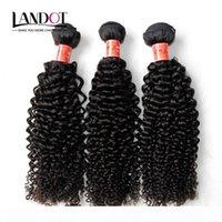 브라질 곱슬 인간의 머리카락 3 번들 처리되지 않은 8A 페루 말레이시아 인도 캄보디아 몽골어 Jerry Kinky Curls 헤어 확장