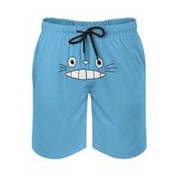 Pantalones cortos para hombres Hombres de verano Playa Transpirable Transpirable Rápido Seco Humor Gráfico Anime Aesthetics Running Totoros Encantador gato (13) Pantalones