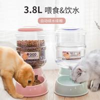 Pet Automatic Water Dispenser Grain Storage Bucket Cat Teddy Feeder 3.8l Large Dog Supplies