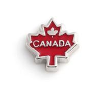 20 PCS / lot Émail Canada Feuille D'érable BRICOLAGE Alliage Charms Flottants Fit Pour Mémoire Magnétique Verre Vivant Médaillon De Mode Bijoux