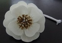 Hot Sale New Design and High Quality Diameter 8. 5cm Sola Flo...