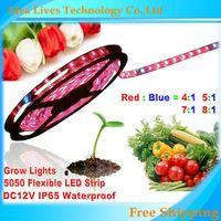 Toptan-5 M 5050 DC12V LED Şerit Bitki Işıkları Büyümek Kırmızı Mavi 4: 1,5: 1,7: 1,8: 1 Sera Hidroponik Bitki Büyüyen, 5m / lot