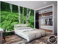 Papier ścienny brzozy drzewa w lesie zielone paprocie muralowe naklejki ścienne tapety papel de parede wallpapers2015523
