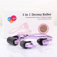3 in 1 Großhandel Titan Micro Nadel Derma Roller Medical 540 Micro Mesoroller Derma Roller Hautpflege