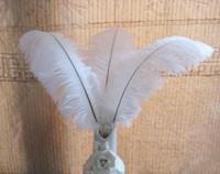 20pcs / lot las plumas de avestruz blanco natural Plume pieza central para la fiesta de la boda decoración de la tabla del envío (muchos tamaños para que usted elija)