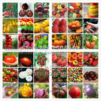 200 semi 36 tipi di pomodori Varietà completa di bonsai molto gustosi e facili da coltivare in vaso