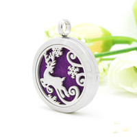 elk Aromatherapy Essential Oil Diffuser Necklace magnet clos...