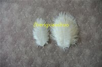 Free Shipping,Prefect Natural Ostrich Feather white 5-8 inch wedding Centerpieces Wedding Decoration party supply decor