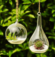 waterdrop glass vases circle rould ball vases flower pots pl...
