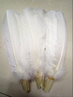 Turkey Feathers White Turkey Round Quill Feathers 10- 12inche...